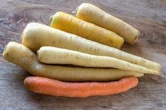 Een selectie van wortelcultivars royalty-vrije stock fotografie