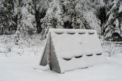 Een serre in sneeuw wordt behandeld die Stock Foto