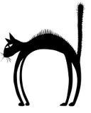 Een silhouet van varkenshaar zwarte kat Stock Foto