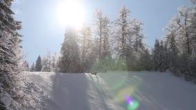 Een skiër die bergaf slalom met zon flakkert in het schot ski?en stock video