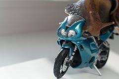 Een slak berijdt een het rennen motorfiets, concept snelheid en succes, selectieve nadruk royalty-vrije stock afbeelding