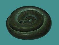 Een slang krulde in een cirkel Royalty-vrije Stock Afbeeldingen