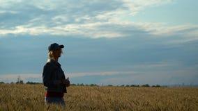 Een slanke vrouw loopt op een tarwegebied en glimlacht op een Zonnige de zomerdag stock footage
