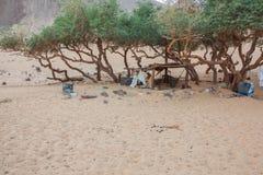 Een slordige oase dichtbij Jazirat Salujah stock fotografie