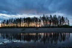Een smalle rij van bomen op de bank en nagedacht in de rivier stock afbeeldingen