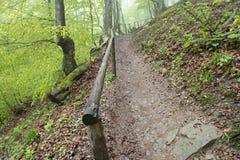 Een smalle steile bergweg in het bos met oude leuningen Stock Afbeelding