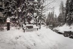 Een sneeuw behandelde bank in Vail, Colorado tijdens de winter royalty-vrije stock afbeeldingen