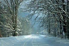 Een sneeuw Behandelde Weg van de Winter Royalty-vrije Stock Foto's