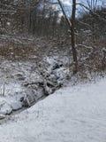 Een sneeuw koude mooie dag Royalty-vrije Stock Afbeelding