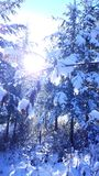 Een Sneeuwreis Royalty-vrije Stock Afbeelding