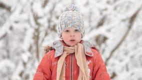 Een sneeuwstorm in December De jongen in een sneeuwbos stock video