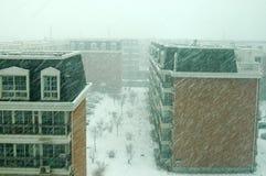 Een sneeuwstorm in Peking Royalty-vrije Stock Fotografie