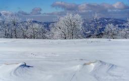 Een Sneeuwweide royalty-vrije stock afbeelding