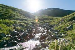 Een snelle bergstroom in de bergen stock foto's