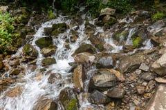 Een snelle die bergstroom met rotsen, door groen worden omringd royalty-vrije stock foto's