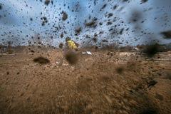 Een snelle rit op de Vierlingfiets op de weg royalty-vrije stock foto