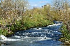 Een snelle rivier met bomen en struiken op de banken Royalty-vrije Stock Fotografie