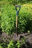 Een spade in de grond Royalty-vrije Stock Afbeeldingen