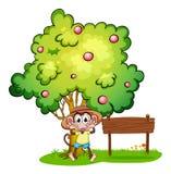 Een speelse aap naast het lege uithangbord onder de boom Stock Afbeelding