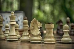 Een spel van schaak Royalty-vrije Stock Foto's