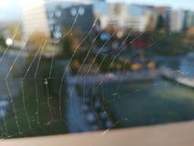 Een Spiderweb brak Uw Monitor stock afbeeldingen
