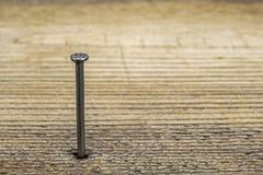 Een spijker in een houten plank royalty-vrije stock foto's