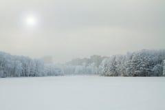Een stad in de winter Royalty-vrije Stock Foto's