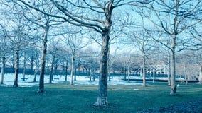 Een stadspark in München stock afbeeldingen