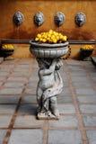 Een standbeeld van de citroenen van een jongensholding. royalty-vrije stock foto