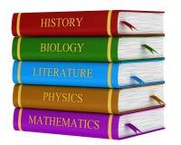 Een stapel schoolboeken vector illustratie
