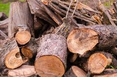 Een stapel van brandhout Stock Foto's