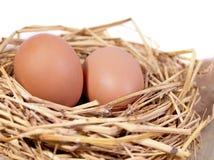 Een stapel van bruine eieren in een nest Stock Foto