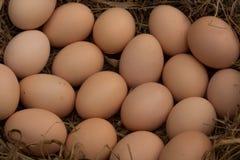 een stapel van bruine eieren in een nest op een zandachtergrond, Veel eieren Royalty-vrije Stock Afbeelding