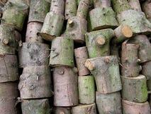 Een stapel van gezaagde boomstammen royalty-vrije stock foto's