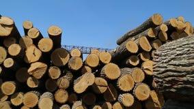 Een stapel van hout stock footage