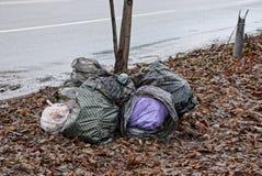 Een stapel van plastic zakken met vuilnis in de gevallen bladeren dichtbij de weg royalty-vrije stock fotografie