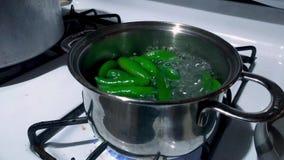 Een steelpan van peper die op een fornuis koken Mexicaans kruidig voedsel, stock footage