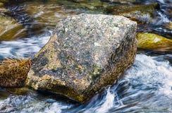 Een steen in het midden van de rivier Stock Foto