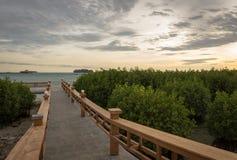 Een steenbrug die tot een plaats leidt om van de zonsondergang op Koninklijk Eiland, Indonesië te genieten Omringd door mangroveb stock fotografie