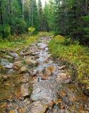 Een steenweg langs de rivier Stock Afbeeldingen
