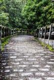 Een steenweg op een heuvel Royalty-vrije Stock Afbeeldingen