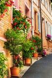 Een steile die steeg met geraniums wordt versierd Stock Afbeelding