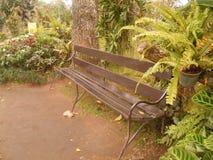 Een stoel in de tuin Stock Foto