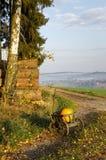 Een stootkar met twee pompoenen stock afbeeldingen