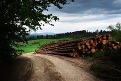 Een stortplaats houten op de rand van de weg royalty-vrije stock foto