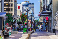 Een straat in Ottawa Stock Afbeelding
