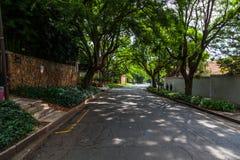Een straat in Westcliff-voorstad van Johannesburg Stock Fotografie