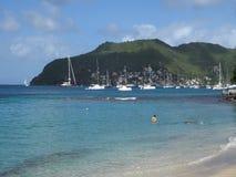 Een strand in de Caraïben stock footage