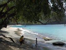 Een strand in de Caraïben stock video