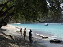 Een strand in de Caraïben stock videobeelden